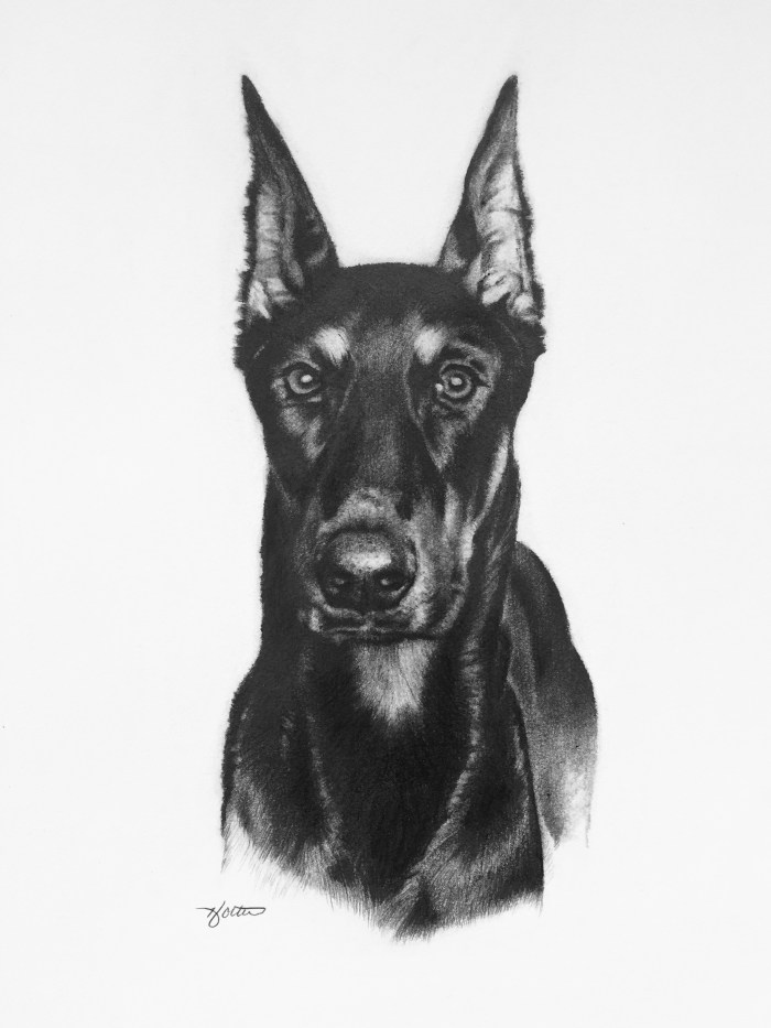 """Deuce"" pencil portrait"