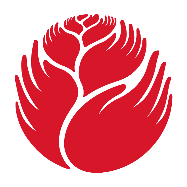 Jeff Kahn logo and brand design