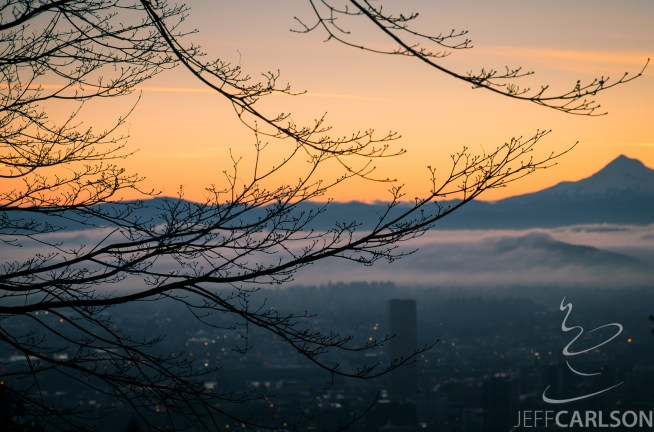 """My friend Mason Marsh invited me to an impromptu sunrise shoot at Pittock Mansion, which overlooks downtown Portland with Mount Hood in the distance. Although the fog wasn't as dramatic as he was hoping for, it still made for a nice photo. And we weren't the only ones to think so: maybe 50 photographers were set up when we arrived, which meant the """"typical"""" vantage point was filled. All the more reason to look for something creative."""