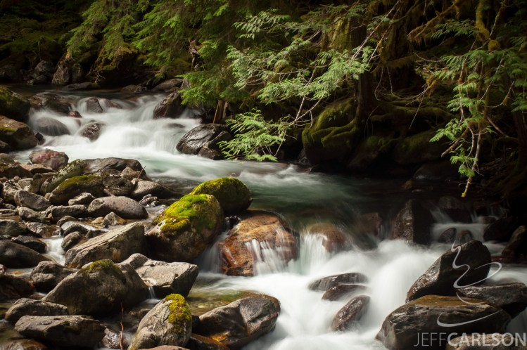 To reach this area of Newhalem Creek, you first follow the Rock Shelter trail, which ends in a section of mountain adorned with petroglyphs where Native Americans would take shelter from the elements. But don't turn toward the shelter and its accessible trail. Instead, turn left at the guidepost that points to Newhelm Creek and follow a smaller, less-maintained path through the forest.