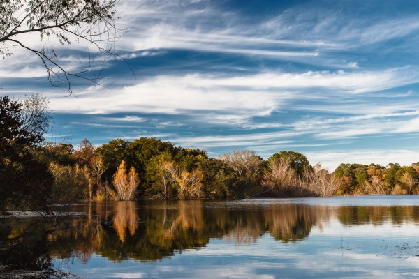 texas hill country landscape
