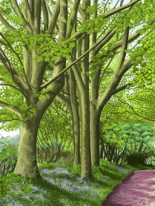 ipad drawing, the road to Oldstead, North Yorkshire