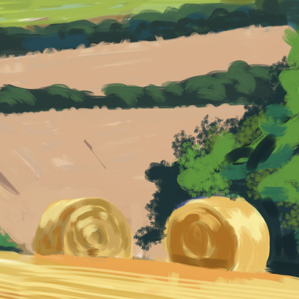 Hay bales, Coxwold - detail