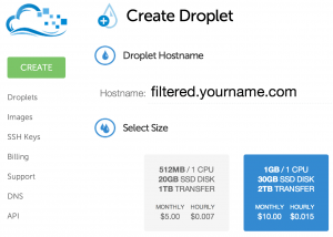 Create a Droplet with Your Hostname