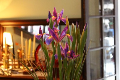 Asiatic irises in the dining room.