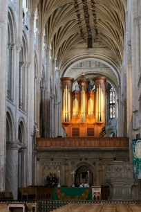 Organ from the west