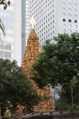 Christmas tree on Hong Kong Island, near the city hall.
