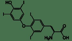 Thyroxine_2D_skeletal