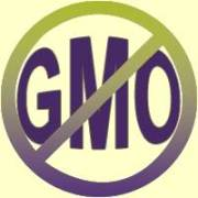 Genetically Modified GMO Food Part 2