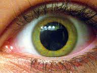 Getting Off SSRI Antidepressants - Jeffrey Dach MDDilated Pupils Drugs Picture
