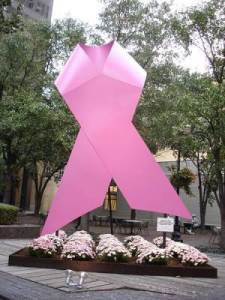 pink ribbon,breast cancer, awareness, cancer, support
