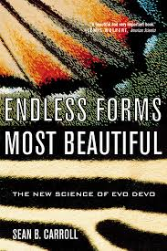 Endless Forms Most Beautiful Sean Carroll