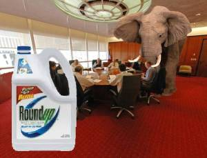 Elephant in the Room isGlyphosate