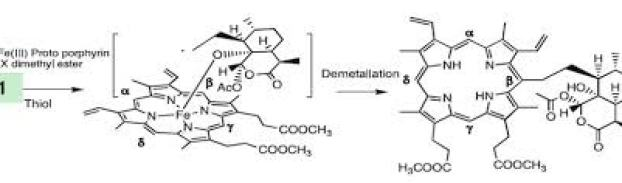 artemesinin_reacting_with_Heme
