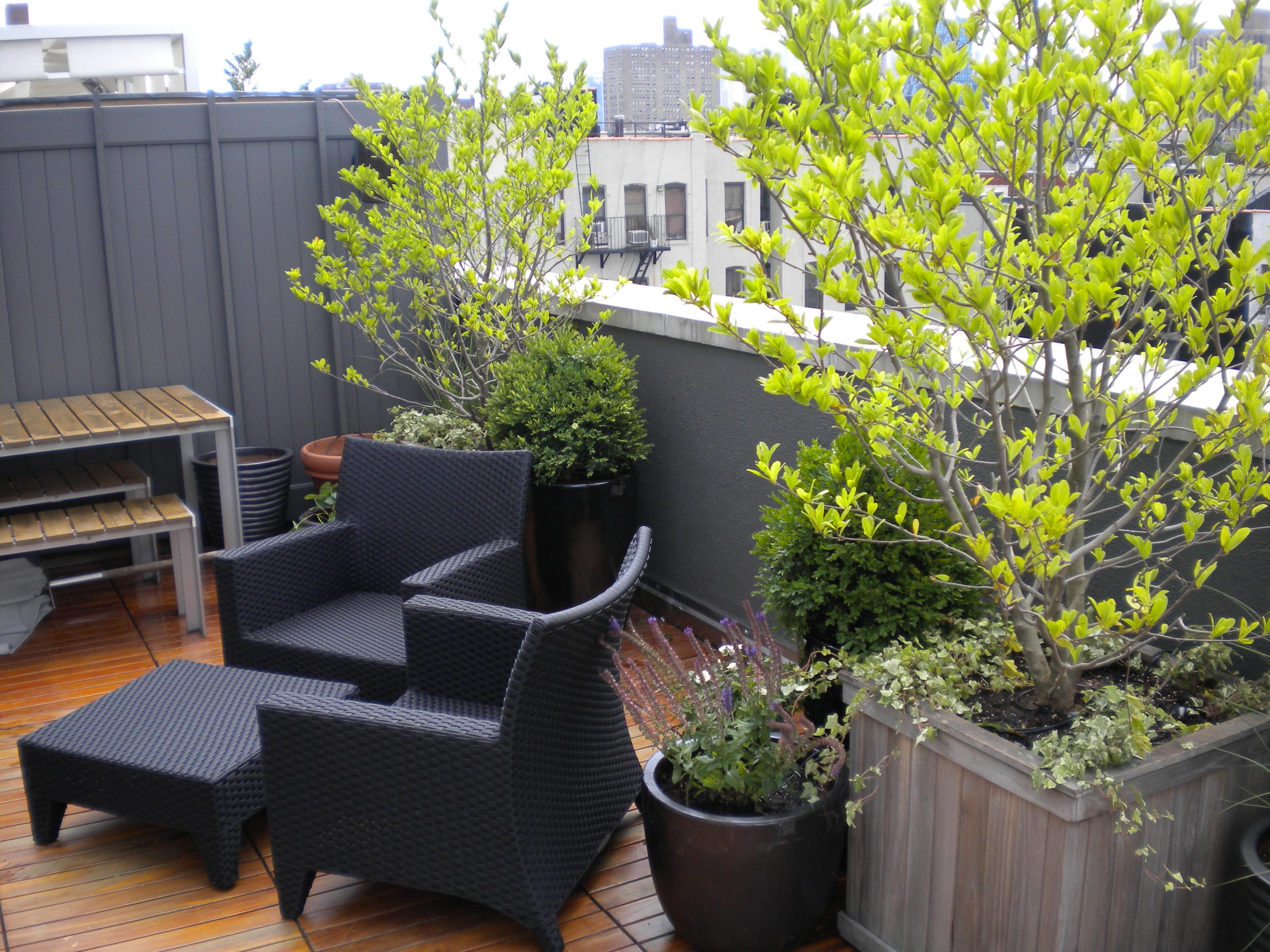 Small Modern Terrace Garden Design See More