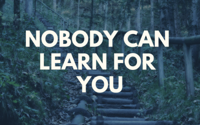 Nobody Can Learn for You