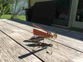 Steampunk Wasp 3