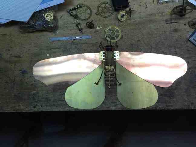 16 both wings