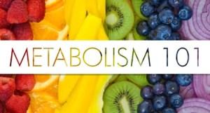 Metabolism_101