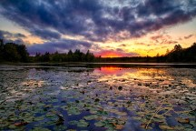bellamy-reservoir-lilypad-sunset-1973-hdr-edit.jpg