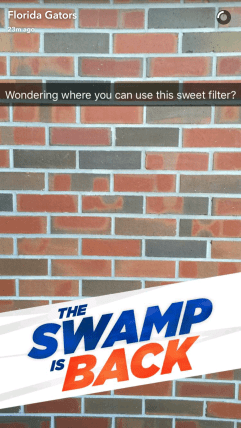 uf_theswampisback