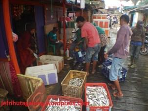 Penimbangan Ikan Yang Berhasil di Tangkap Nelayan di Ds Talisayan
