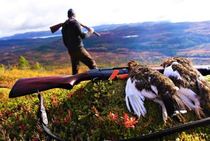 Fuglejakt og lavvohelg i Bangdalen