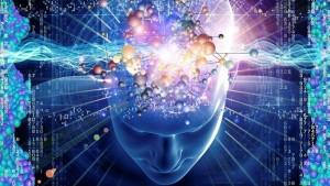 neurociencia1