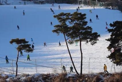 ski south korea seoul winter
