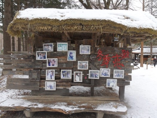 nami island south korea 38
