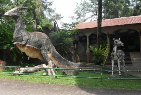 royal safari garden15