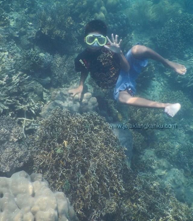 snorkeling pulau pahawang lampung 11