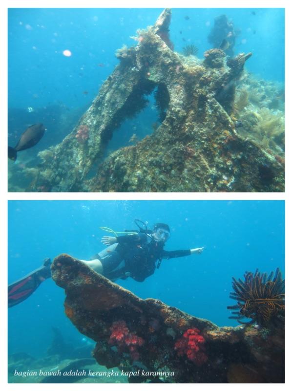scuba diving tulamben bali 2