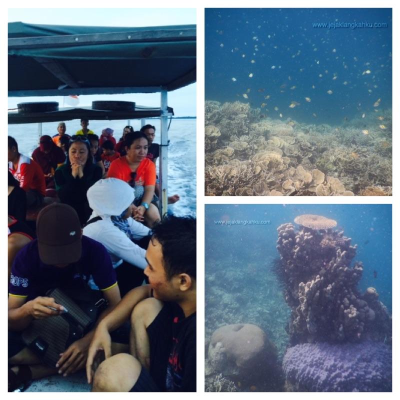 snorkeling pulau kayu genteng a