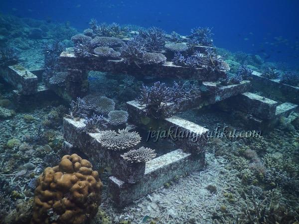 gili-bidara-lombok-1