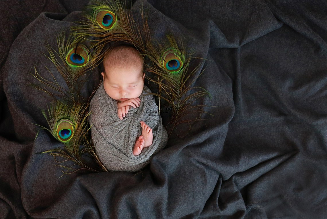 Newborn photography sessions and studio newborn photography comes with posing, props.