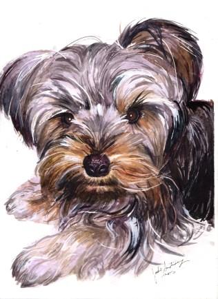 """Ink, 9x12"""" Pet Portrait Commission"""