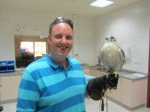 Holding a falcon