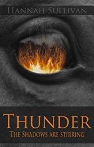 thunder by hannah sullivan