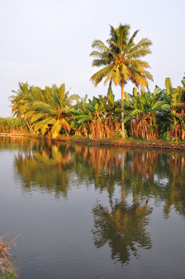 Indien Backwaters_6