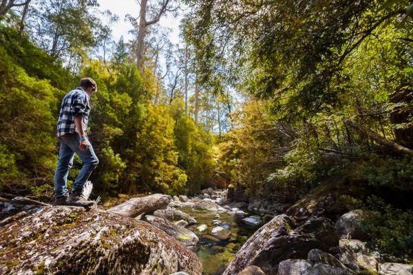 Standing Strong - Photographer: Jellis vaes