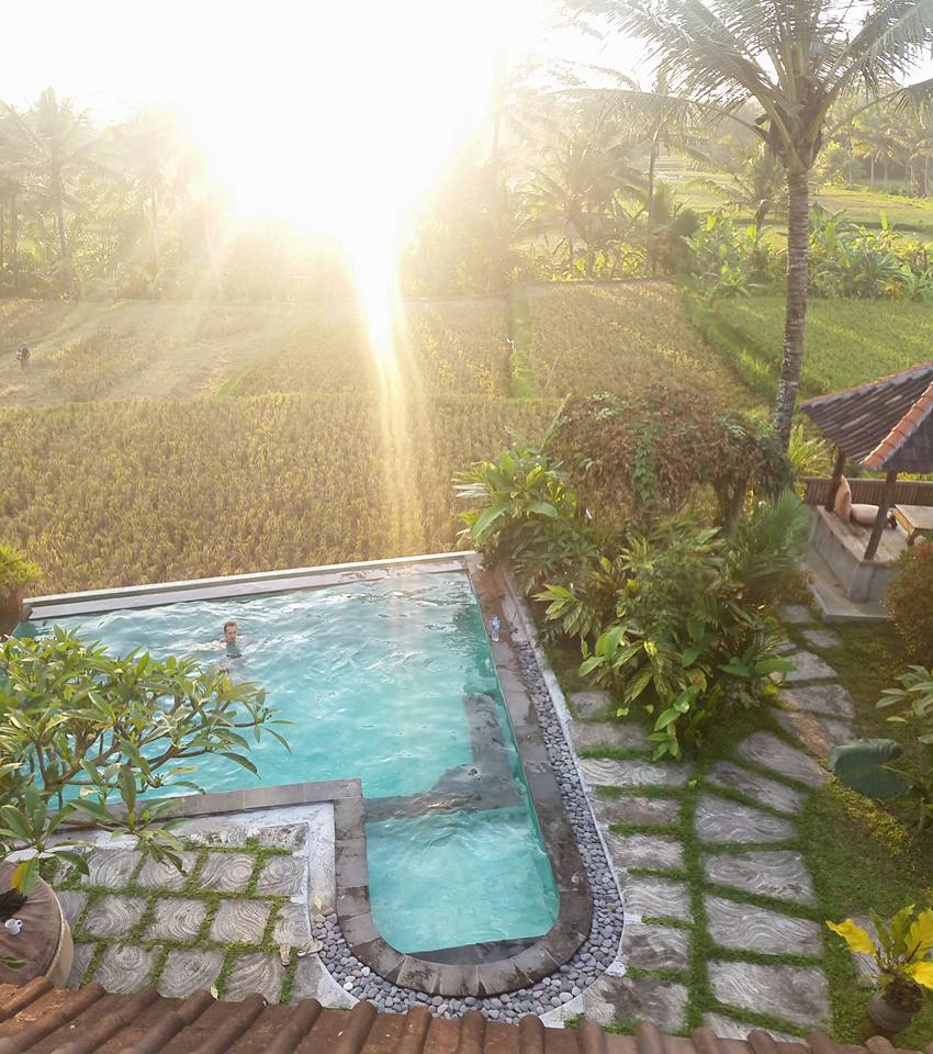 Swimming pool in Bali - Article Think Like a Genius