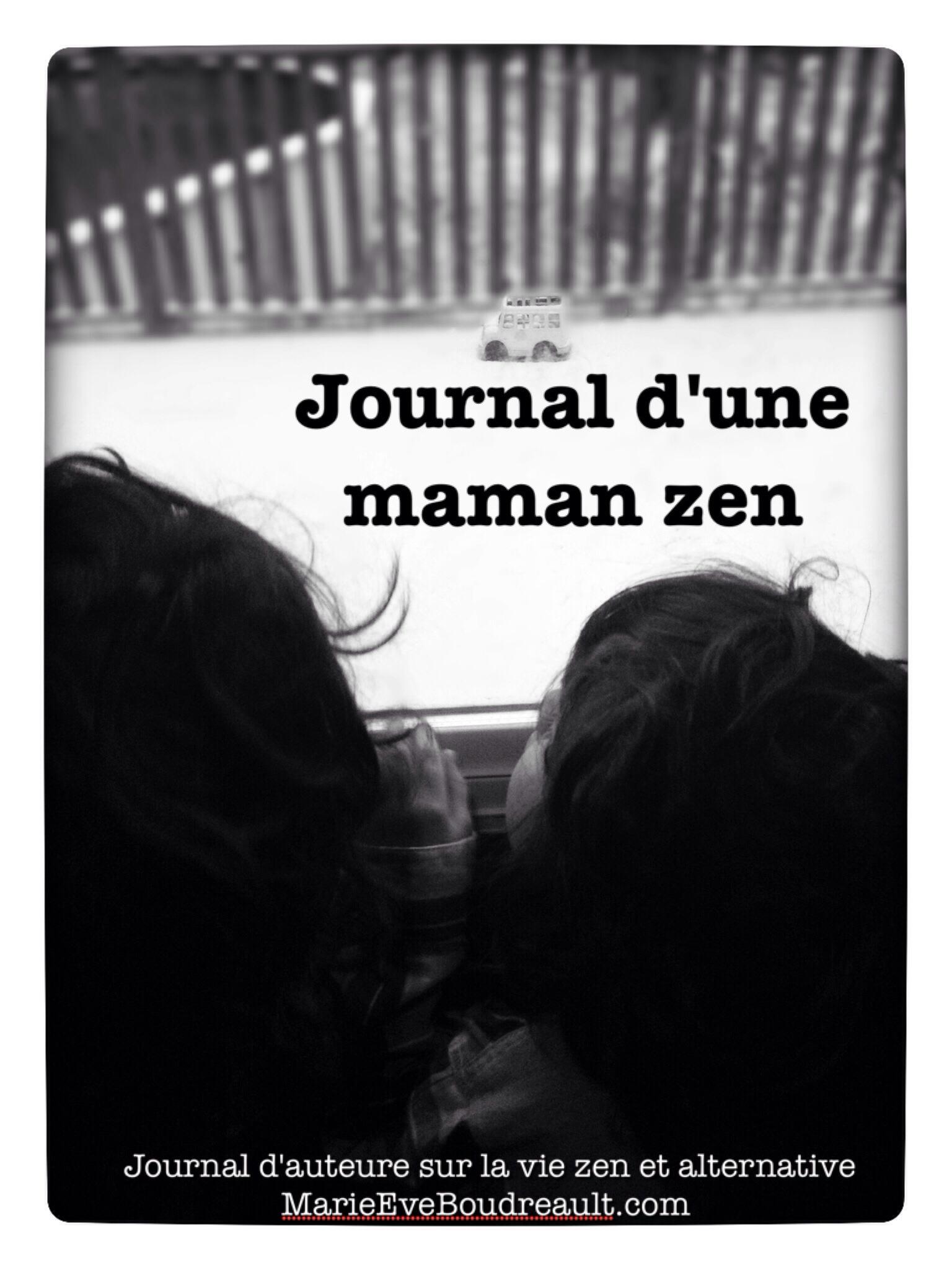 Journal d'une maman zen livre marie-eve Boudreault blog article maman à la maison vie zen et alternative priorités sans stress