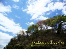 Exploring Bandealit Beach Meru Betiri National Park