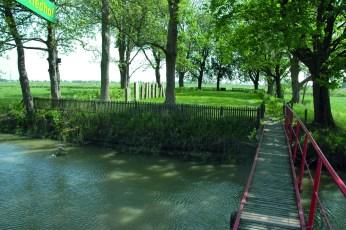 2011_0507_145307AA judenfriedhof