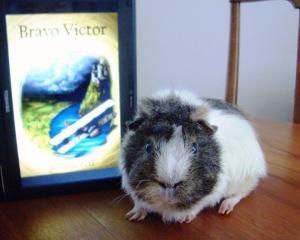 BV Victor 1