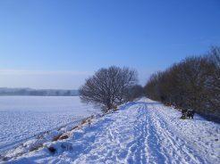 Norfolk snow