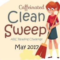 cleansweepbutton2017