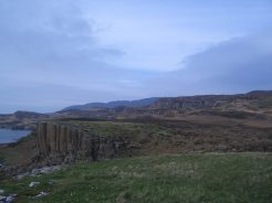 S side of Ulva