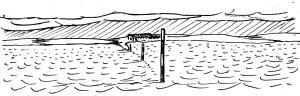 redshank flooded crossing